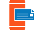 EChecks Icon